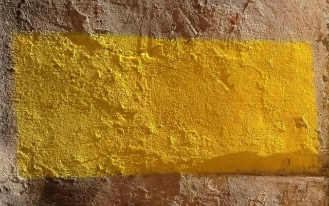 que c'est beau le jaune !-image